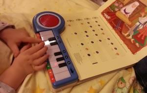 augo putins su šermukšniu pianinas su žiburėliais