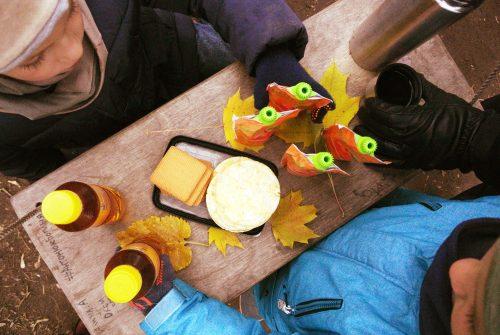 piknikas-ziema